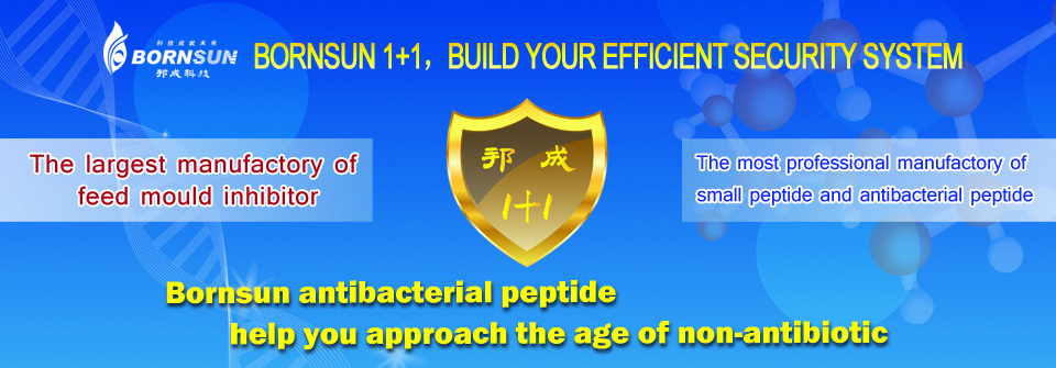 The largest producer of feed mould inhibitor The most professional producer of small peptide and antibacterial peptide